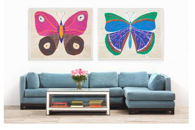 Natural Curiosities Butterfly Prints