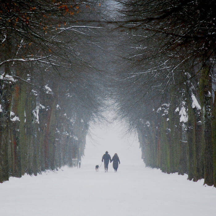 hygge-snow-walk